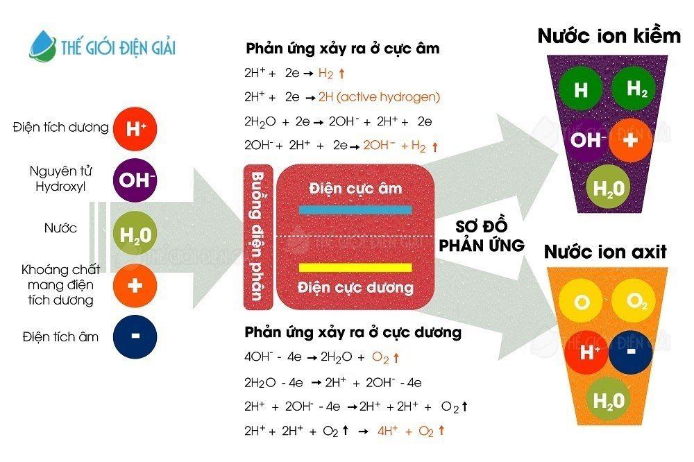 Các phản ứng hóa học xảy ra của quá trình điện phân nước ion kiềm