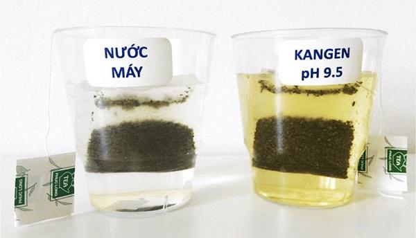 Nước ion kiềm từ máy lọc nước ion kiềm Kangen - Enagic LeveLuk SD501 Platinum pha trà được không?