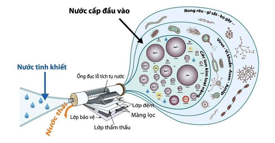Máy lọc nước hydrogen ion kiềm loại bỏ đến 99.99 % tạp chất, cặn bẩn, kim loại nặng, virus, vi khuẩn... để tạo thành nước tinh khiết