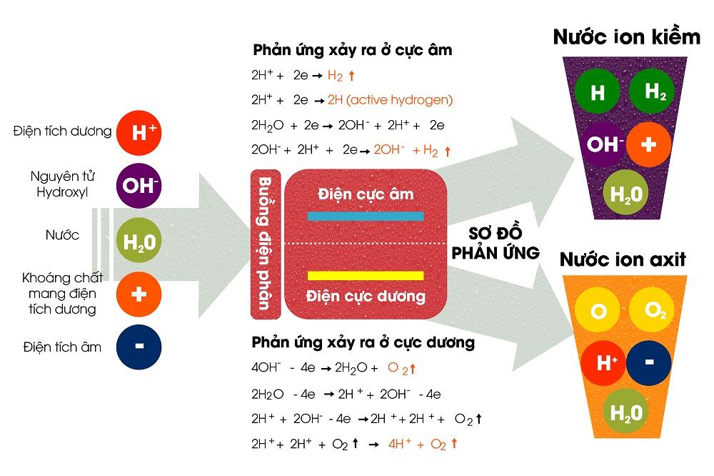Phản ứng hóa học chung khi tách phân tử nước tại buồng điện phân