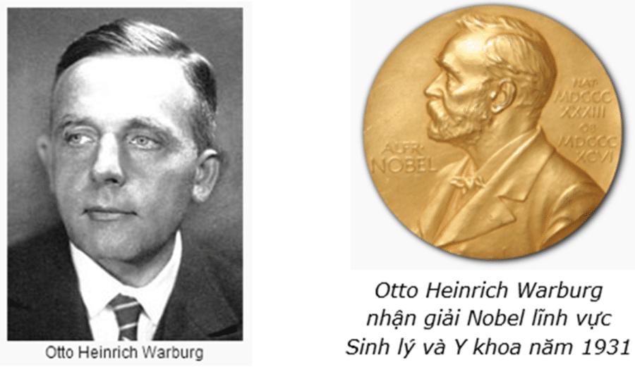 Otto Heinrich Warburg chả để của việc kiềm hóa cơ thể trị ung thư