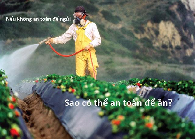 thuốc trừ sâu, thuốc bảo vệ thực vật, chất bảo quản trên bề mặt rau, củ, quả.