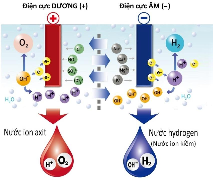 Nước Hydrogen là gì và có tốt không? Tìm hiểu từ A-Z nguồn nước quý giá từ Nhật Bản