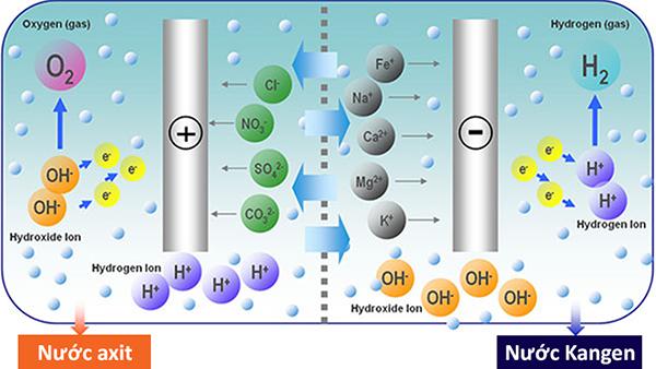 Cách tạo ra nước điện giải