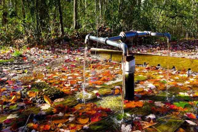 Khám phá bí ẩn những nguồn nước có khả năng chữa bệnh thần kỳ