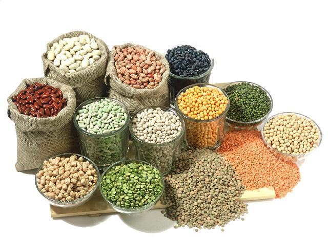 bệnh thalassemia nên ăn nhiều đậu để bổ sung protein