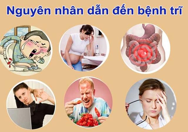 Một số nguyên nhân phổ biến dẫn đến bệnh trĩ