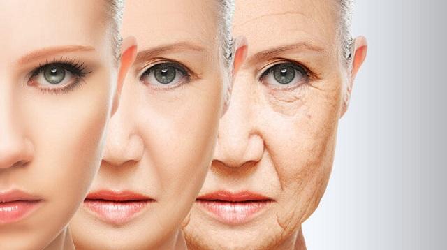 Con người có thể đảo ngược quá trình lão hóa không?