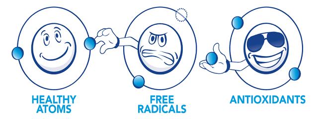 Cơ chế trung hòa các gốc tự do của các chất chống oxy hóa (Antioxidants)