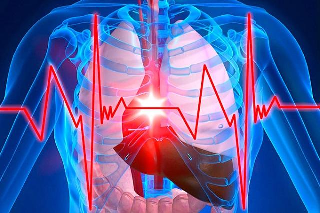Kết quả một số công trình nghiên cứu cho thấy trước khi đi ngủ, uống một cốc nước có thể giúp phòng ngừa chứng tai biến mạch máu não và các bệnh tim mạch khác nhau