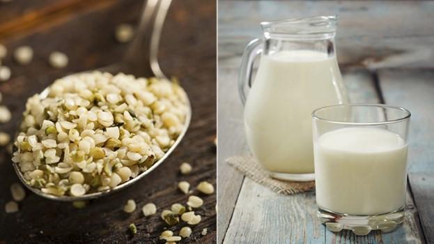 sữa có nhiều chất béo từ hạt dinh dưỡng