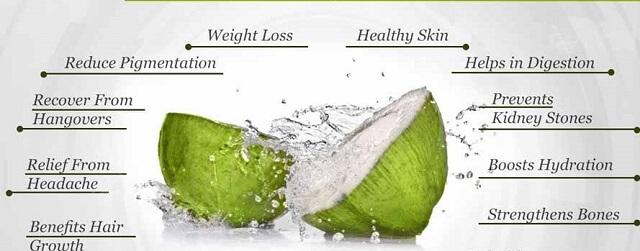 Tác dụng của nước dừa tươi với sức khỏe 2