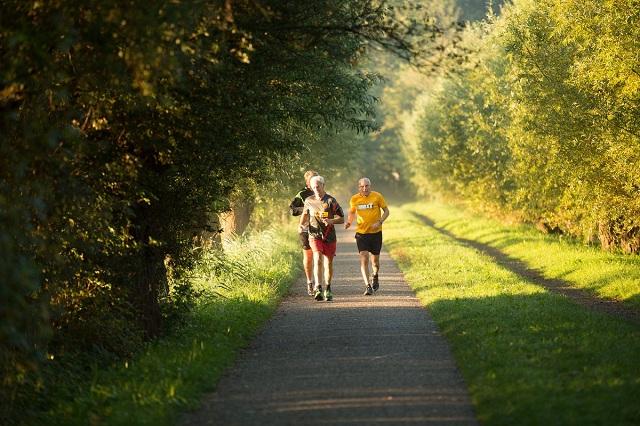 Tập thể dục mỗi ngày giúp tăng lưu thông máu trong cơ thể