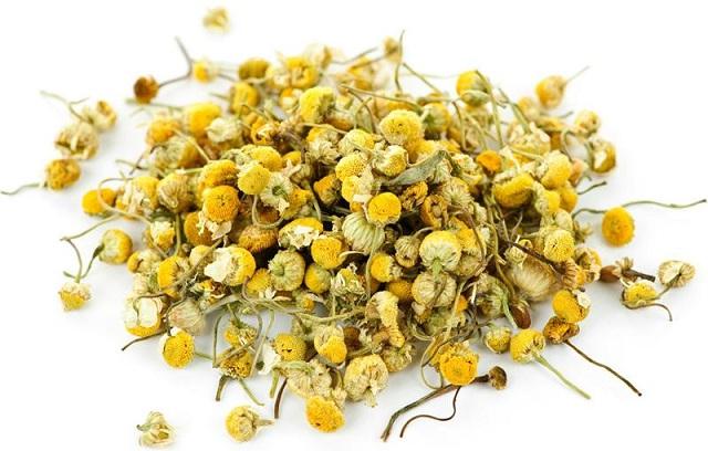 hình ảnh trà hoa cúc lúc chưa được chế biến