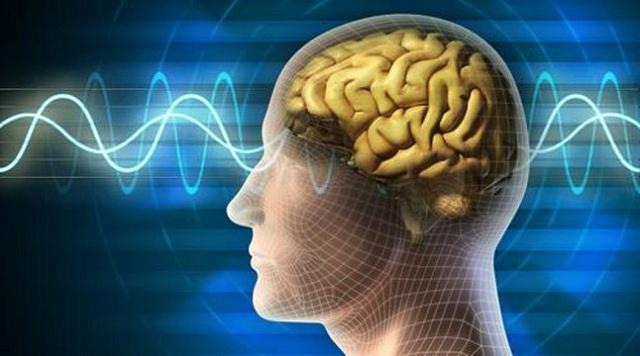 Theo tiến sĩ David Lewis-Hodgson, nhạc sóng não có tác dụng giảm stress hiệu quả