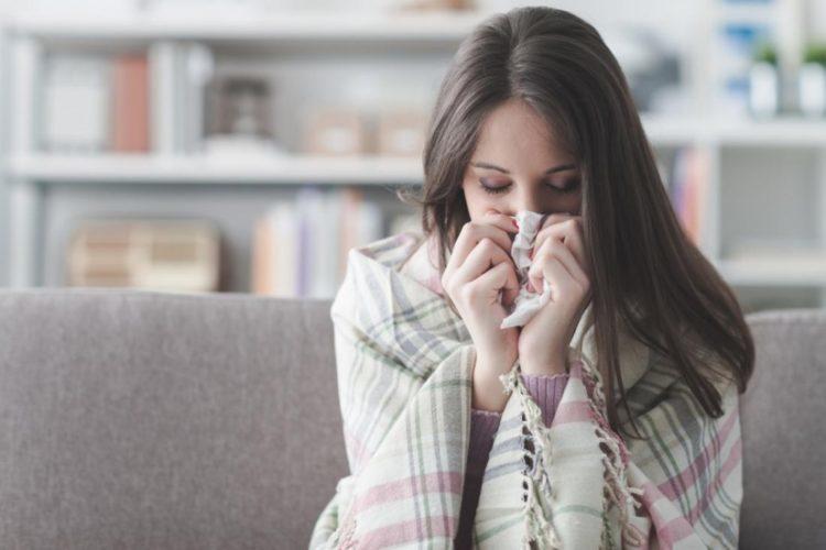 trà hoa cúc trị cảm lạnh