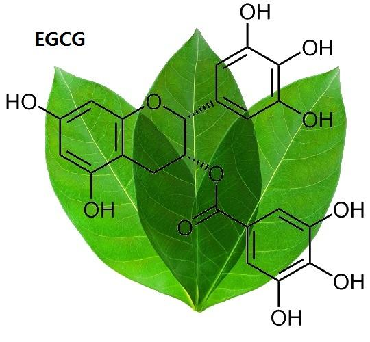 hình ảnh cấu trúc của Polyphenol