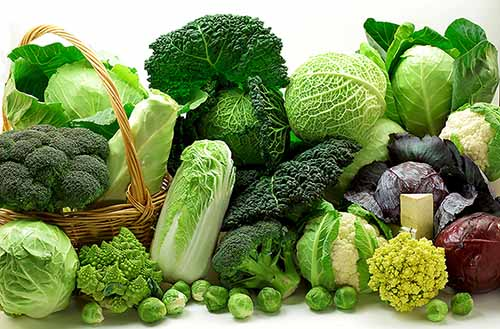 thực phẩm trung hòa axit trong dạ dày
