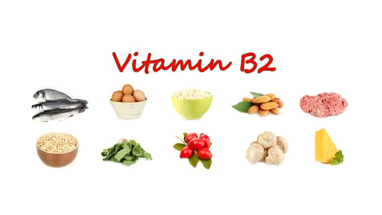 thực phẩm có chứa nhiều vitamin b2 bạn nên bổ sung trong bữa ăn