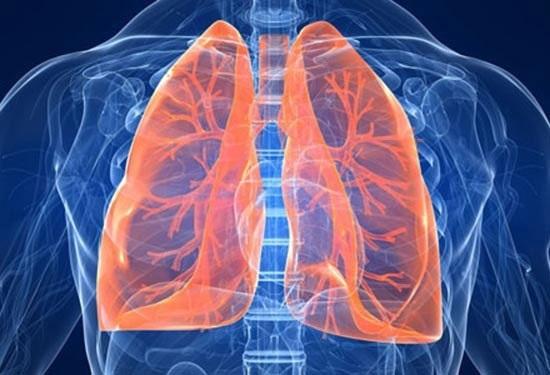 làm sạch phổi là một trong những vai trò của nước đối với cơ thể