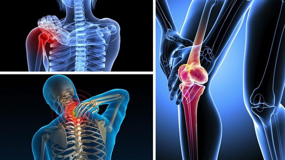 vai trò của xương đối với sức khỏe